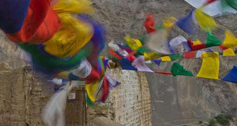 Best-of-Ladakh