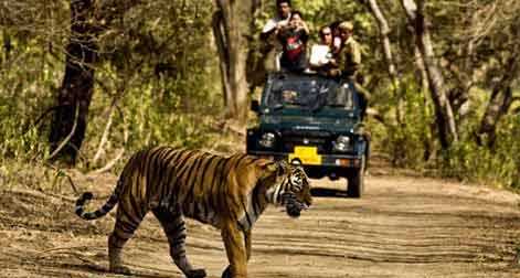 Golden_Triangle_with_Ranthambore