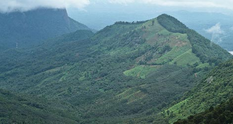 Kerala_Mountain_Tour